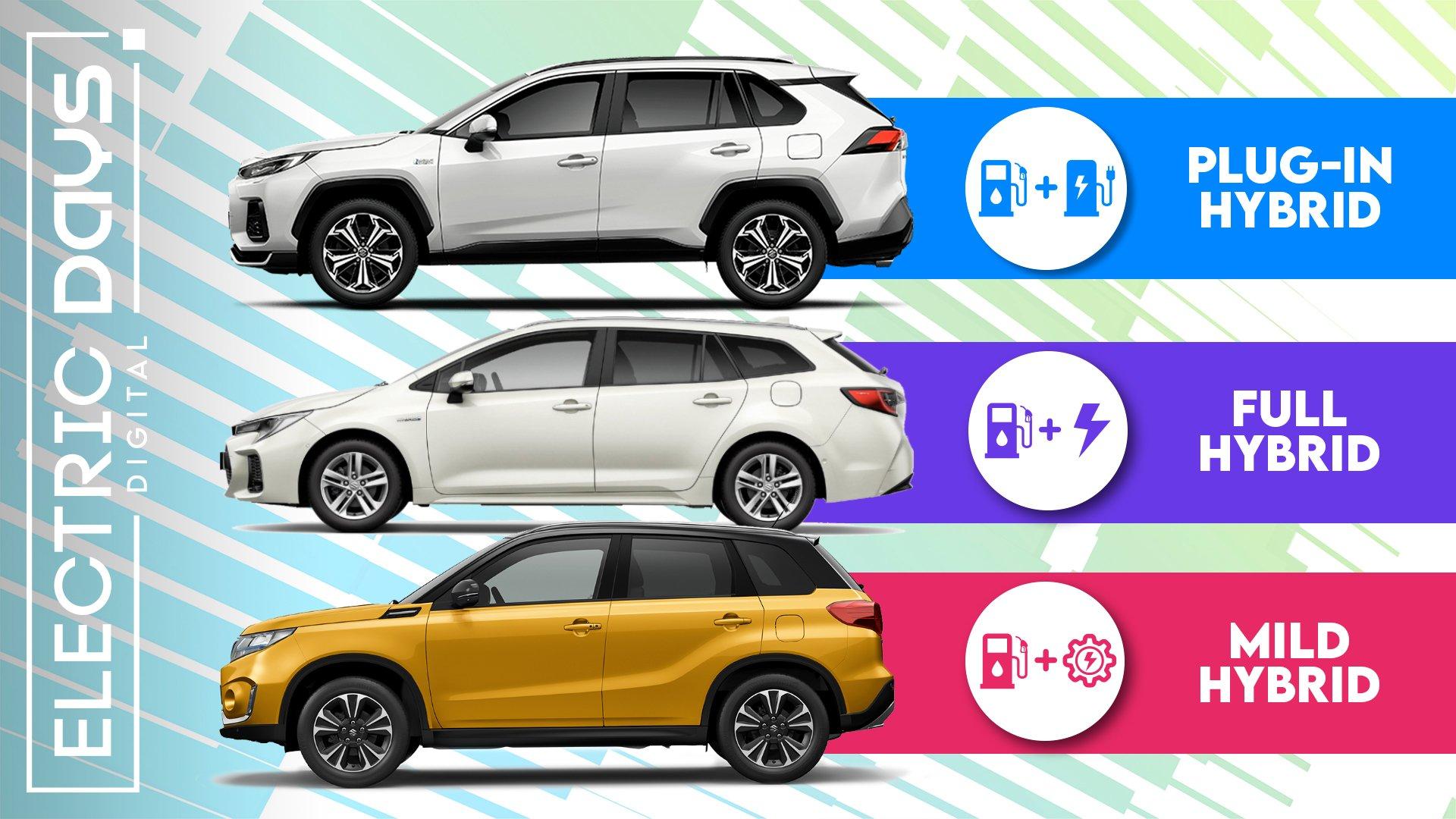 Guida per Suzuki